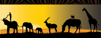 Animali africani Fotografie Stock