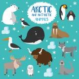 Animali artici di vettore ed antartici stabiliti Fotografie Stock