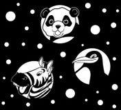 Animali in bianco e nero Immagini Stock Libere da Diritti