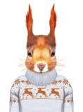Animali come essere umano Ritratto dello scoiattolo in maglione Immagine Stock