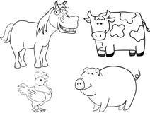 Animali da allevamento Fotografia Stock