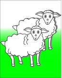 Animali da allevamento Immagini Stock Libere da Diritti