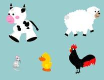 Animali da allevamento Immagine Stock