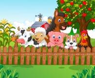 Animali da allevamento della raccolta del fumetto Fotografie Stock