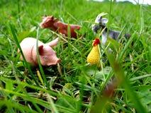 Animali da allevamento miniatura del giocattolo nell'erba Fotografia Stock Libera da Diritti
