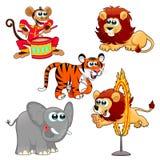 Animali da circo divertenti Fotografie Stock