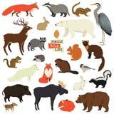 Animali degli oggetti di Forest Wildlife Isolated illustrazione di stock