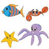 Animali dell'oceano del mare Immagini Stock Libere da Diritti