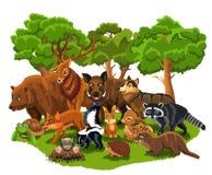 Animali della foresta come l'orso, lupo, volpe, coniglio, scoiattolo, cervo, moffetta, verro illustrazione vettoriale