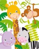 Animali della giungla Fotografie Stock
