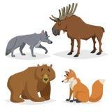 Animali di Europa e di Forest North America messi Lupo, alci, orso e volpe rossa Sorridere felice e caratteri allegri Illu dello  illustrazione vettoriale