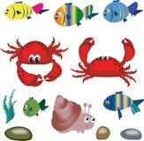 Animali di mare. Fotografia Stock Libera da Diritti