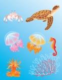 Animali di mare Immagine Stock Libera da Diritti