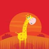 Animali di safari - giraffa sveglia e scena rossa di tramonto Fotografie Stock Libere da Diritti