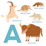 Animali di una lettera messi Alfabeto inglese Illustrazione di vettore Fotografia Stock