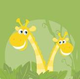 Animali divertenti - famiglia della giraffa della giungla Immagini Stock