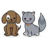 Animali domestici del cane e del gatto Fotografia Stock Libera da Diritti