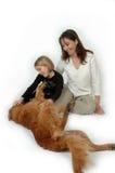 Animali domestici della famiglia fotografia stock libera da diritti