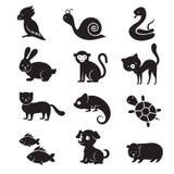 Animali domestici ed icone domestiche di vettore degli animali illustrazione vettoriale