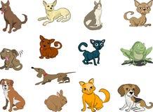 Animali domestici, gatti e cani Fotografie Stock Libere da Diritti