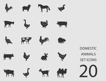 Animali domestici messi delle icone piane Illustrazione di vettore Royalty Illustrazione gratis