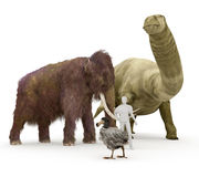 Animali estinti preistorici al confronto umano di dimensione Fotografia Stock
