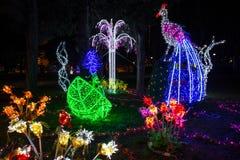 Animali illuminati e colorati a tempo di Natale nella città concentrare di Genoa Genova, Italia fotografia stock