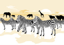 Animali nella savanna illustrazione di stock