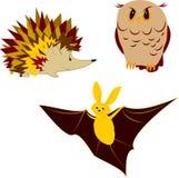 Animali notturni illustrazione di stock