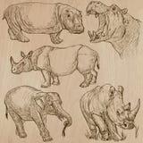 Animali pesanti - vector il pacchetto, disegni della mano Fotografie Stock Libere da Diritti