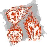 Animali predatori e fiamme - insieme 4. Fotografie Stock Libere da Diritti