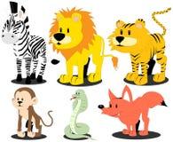 Animali selvatici Fotografia Stock Libera da Diritti