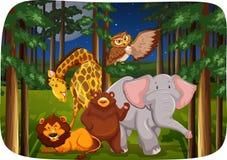 Animali selvatici royalty illustrazione gratis