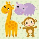 Animali selvatici Immagini Stock