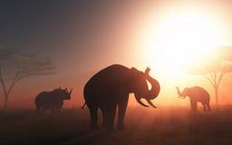 animali selvatici 3D al tramonto Fotografia Stock