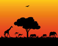 Animali selvatici dell'Africa illustrazione di stock