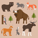 Animali selvatici Illustrazione di vettore Illustrazione Vettoriale