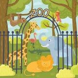 Animali selvatici nel parco dello zoo Giraffa, elefante, pappagallo, leone, bradipo, orso di koala, fenicottero, coccodrillo e ti illustrazione di stock