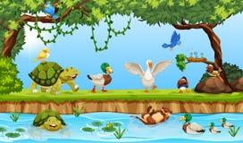 Animali in una scena dello stagno royalty illustrazione gratis
