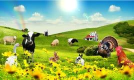 Animali in villaggio Fotografie Stock Libere da Diritti
