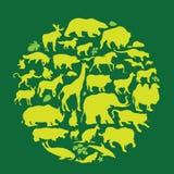 Animals. Set of various animal silhouettes Stock Photos