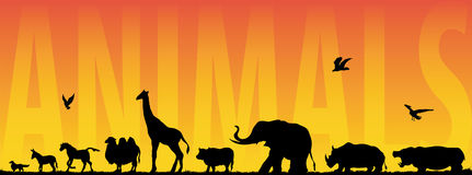 Animals. Vector illustration of various animals walking Royalty Free Stock Images