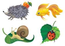Animals. Hengehog, ladybug, snail and fish Stock Photography