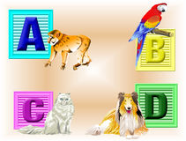 Animals ABCD. Four colorful childs blocks A thru D with the critter they represent Royalty Free Stock Photo