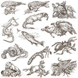 Animals in action, Predators - An hand drawn full sized illustra Royalty Free Stock Photos