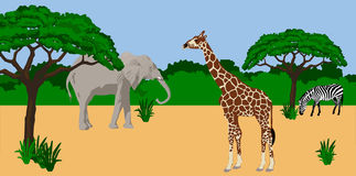 Animals in african scenery. Illustration of a Giraffe, elephant and zebra in African scenery Royalty Free Stock Photos