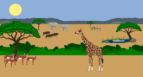 Animals in African scenery. Illustration of a variety of African animals (impala, wildebeest, elephant, giraffe, zebra and hippo) in an african scenery. Lake in Stock Images