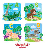 Animals alphabet or ABC. Children vector illustration of funny alligator, bear, cow and dog. Animals zoo alphabet or ABC vector illustration