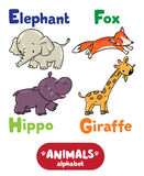 Animals alphabet or ABC. Children vector illustration of funny elephant, fox, hippo and giraffe. Animals zoo alphabet or ABC royalty free illustration