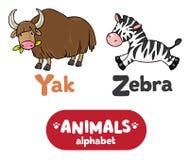 Animals alphabet or ABC. Children vector illustration of funny yak and zebra.  Animals zoo alphabet or ABC Stock Images